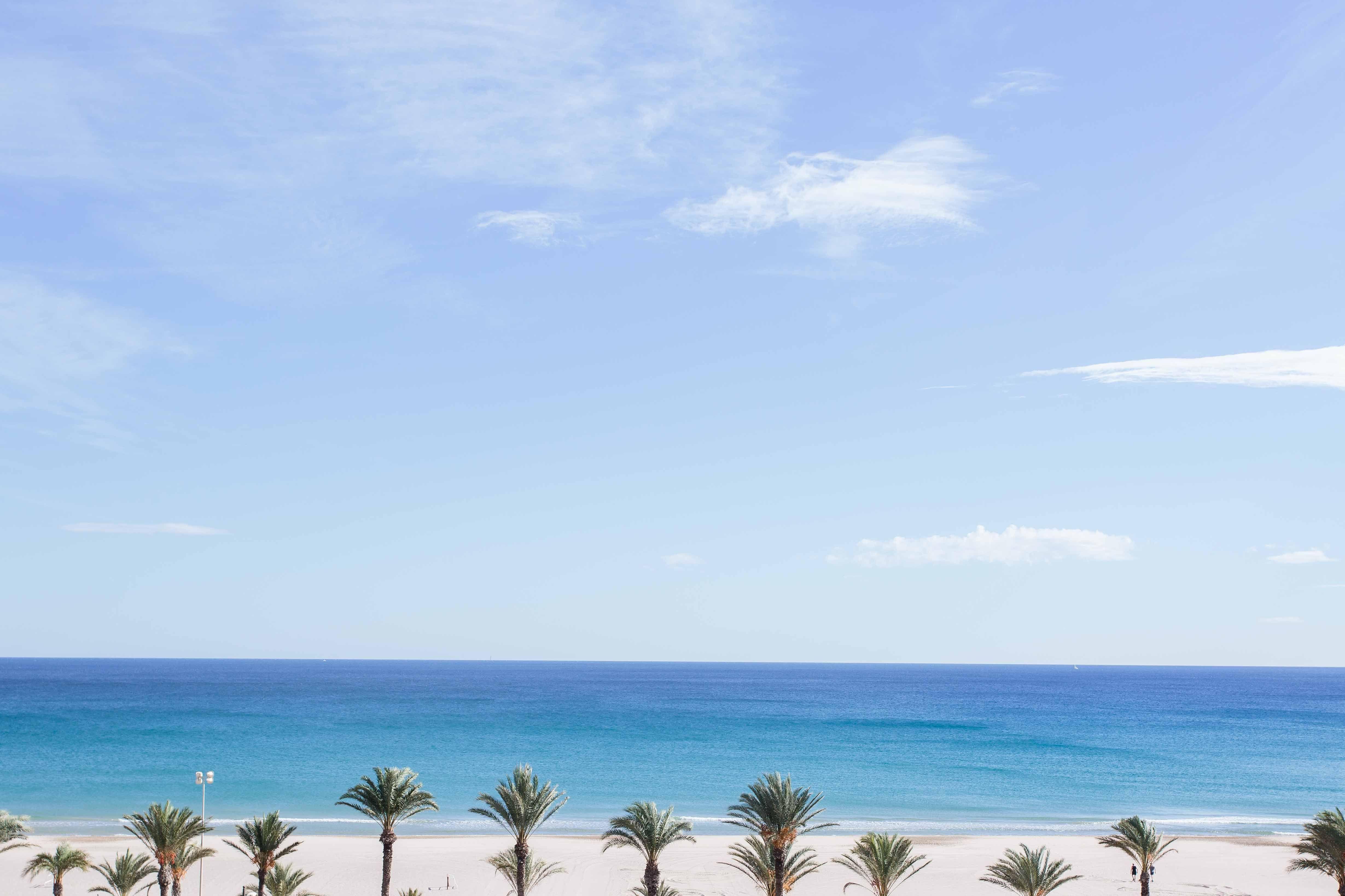 vistas playa con palmeras hotel almirante